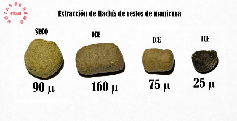 hachis mayas marihuana