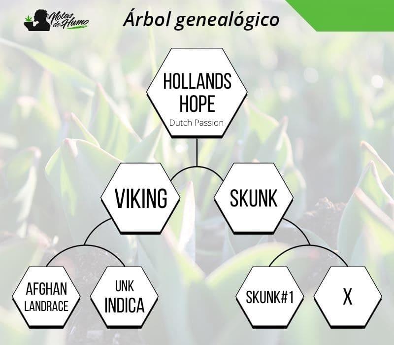 Holland's Hope