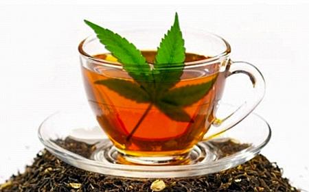 Infusión de Marihuana (receta)