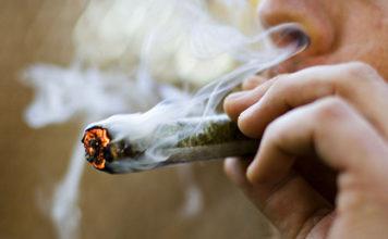 porro de cannabis