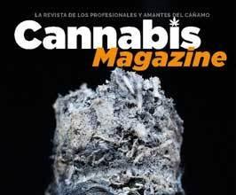 cannabis magazine más de diez años de cañamo