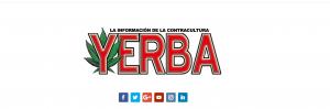 yerba 3.0: del analógico al digital