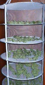 malla de secado vertical