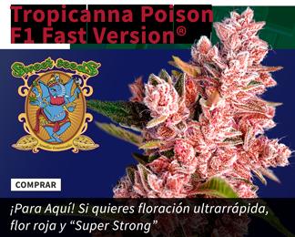 Tropicana Poison