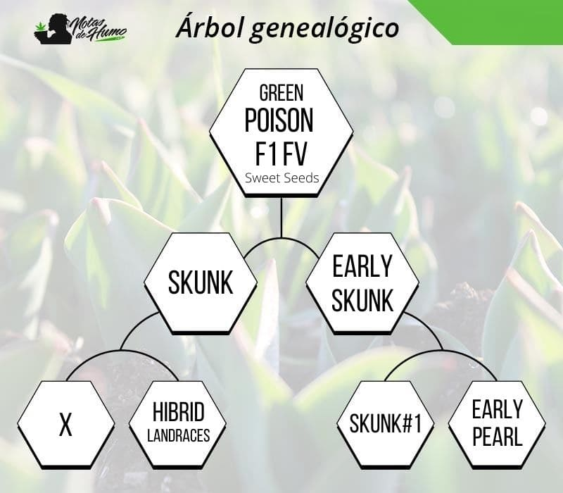 green poison f1 fv