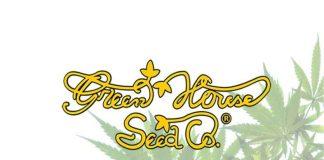 green house seeds