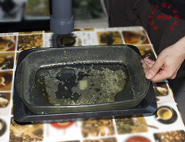 how to make butane hash oil bho