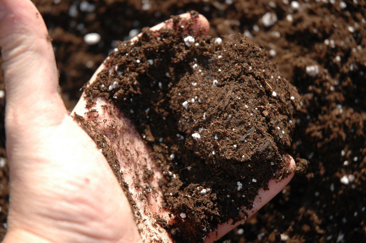 tierra para cultivar